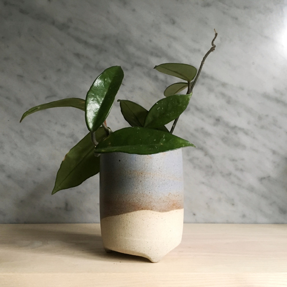 Clay Leaf Image