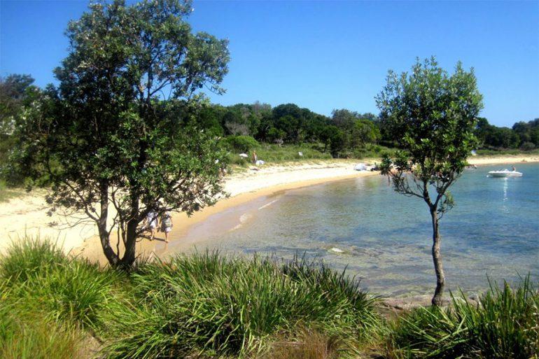 Sydney's Beach Gems