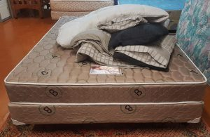 Therapedic Queen Bed with Bedding Included