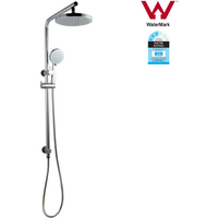 Large Round Twin Shower Head Set with Gooseneck Arm