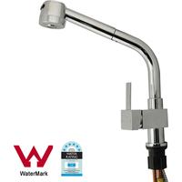 Pull Out Kitchen Mixer Tap w/ 900m Hose in Chrome