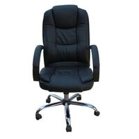 Executive Gas Lift Office Chair with Lumbar Support