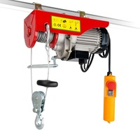Double Rope Electric Winch Hoist 510W 240V 250kg