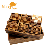 6 Wooden Brainteaser Puzzles in Deluxe Box Set 1