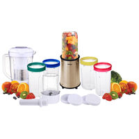 21 Piece Smoothie Food Processor Blender Kit Gold