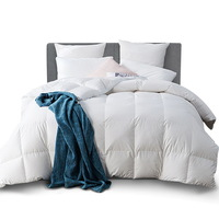 Lightweight Queen Size Goose Feather & Down Quilt