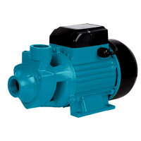 Powerful Electric Water Pump 750W 240V 3300L/Hour