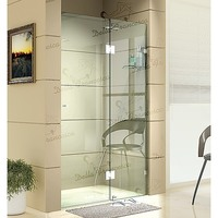 Wall to Wall Frameless Shower Screen Door 1.2x2.0m