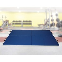 High Impact Exercise Mat  Gymnastics & Martial Arts