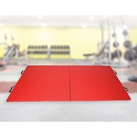 Gym Mat - Yoga Gymnastics Martial Arts Westling