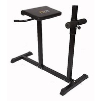 Roman Steel Fitness Hyper Extension Bench Chair