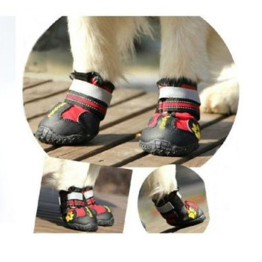 Pompreece High Performance Shoes For Dogs Amp Cats Buy Dog