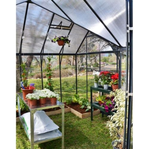 Maze Victory Walk In Clear Polycarbonate Greenhouse Buy