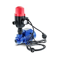 Auto Pressure Control Electric Garden Water Pump