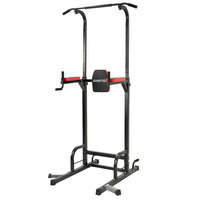 Powertrain 4 in 1 Multi Station Chin-Up Tower