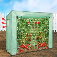 Walk In Garden Greenhouse with PE Cover 196x169cm