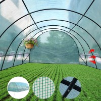 Walk In Garden Greenhouse with Arch PE Cover 3x6m