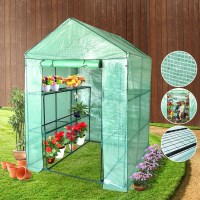 Walk In Garden Greenhouse with Apex Roof 155x140cm