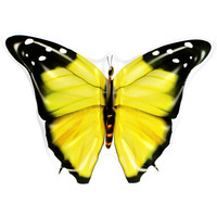 Huge Inflatable Yellow Butterfly Float 133x183x24cm