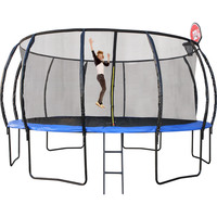 16ft Round Trampoline with Ladder & Basketball Hoop