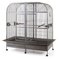 Double Iron Bird Cage with Center Divider & Castors