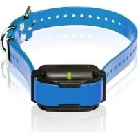 Small Size Usb Rechargeable Led Dog Collar In Blue Buy