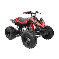 GMX The Beast Sports Quad Bike ATV in Red 125cc
