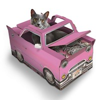 Cat Supplies Your Go To Place For Cat Supplies Australia Wide