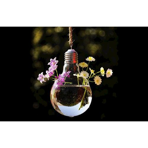 Lightbulb Shape Hanging Vase Buy Vases Decorative Pots