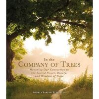 In the Company of Trees : Honoring Our Connection to the Sacred Power, Beauty, and Wisdom of Trees