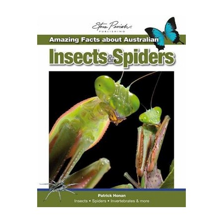 Steve Parish Amazing Facts : Australian Insects & Spiders