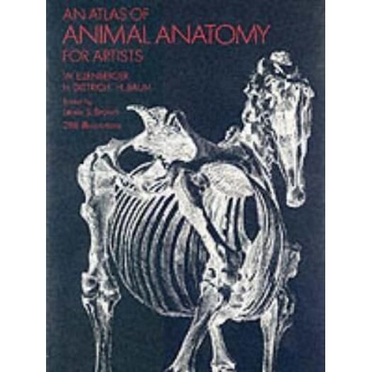 An Atlas of Animal Anatomy for Artists | Buy Lifestyle & Fashion