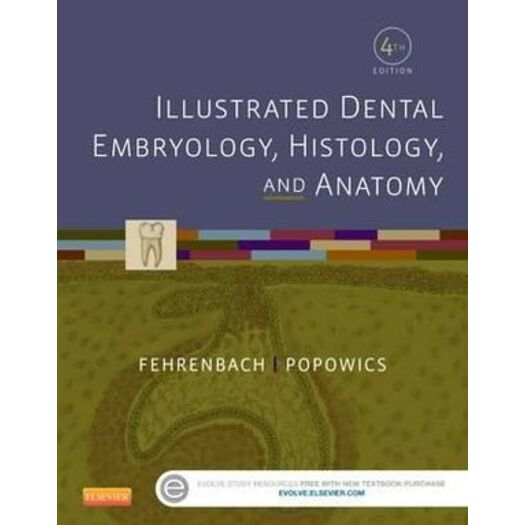 Illustrated Dental Embryology, Histology, and Anatomy 4E | Buy ...