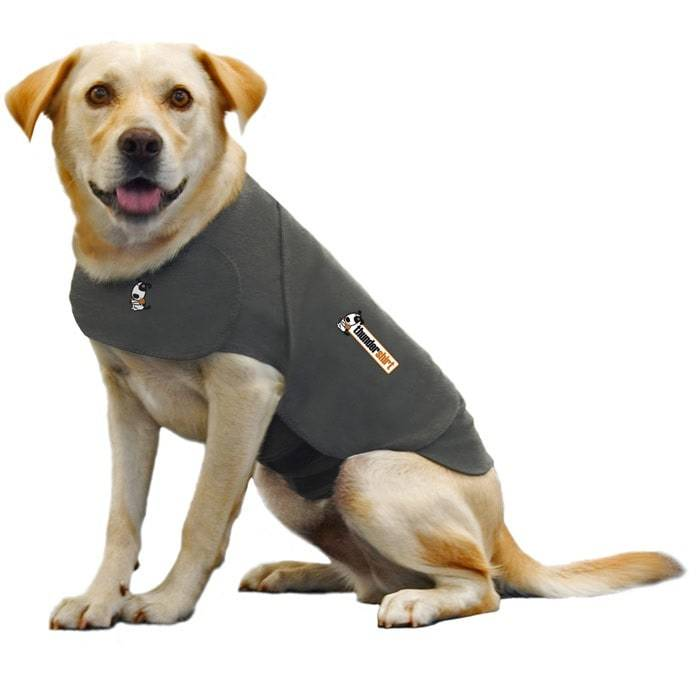 f9979f8d7e1 Dog Clothes - Check Out Our Dog Clothes Australia Pet Owners Love