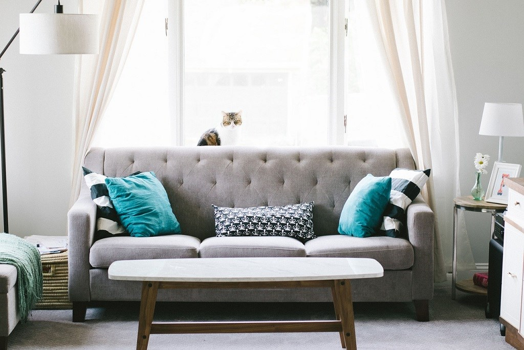 Forever Furniture: A Buyer's Guide to 'The Sofa'