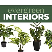 Evergreen Interiors