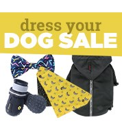 Dress Your Dog Sale