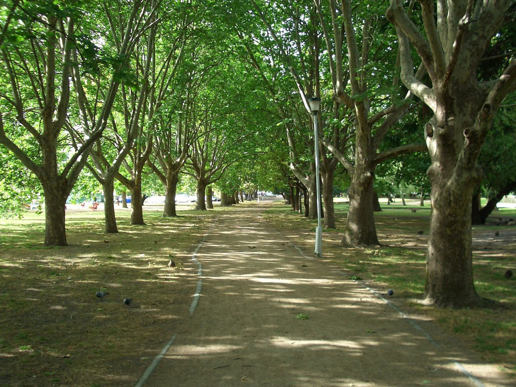Hansen Caulfield Park 3
