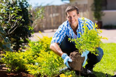 gardening-400x267.png