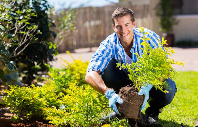 gardening-788x505.png