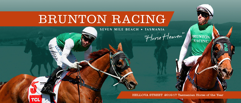 Australian Horse Trainer - Scott Brunton Racing