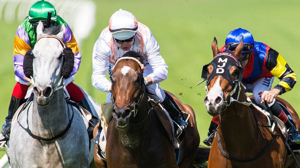 Fiery Heights up to another stakes test