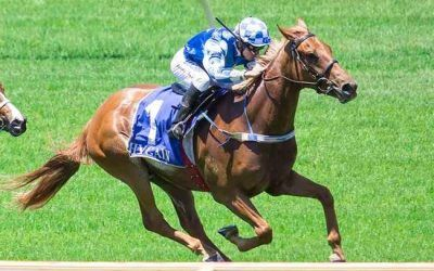 Prize Catch 3rd In G2 Perth Cup