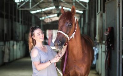 Love for horses drives Collins | Andrew Dale Racing