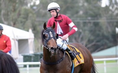 Parliament makes it two wins from three starts since joining Andrew Dale | The Daily Advertiser