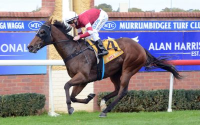 Parliament wins at Wagga carnival | Andrew Dale Racing