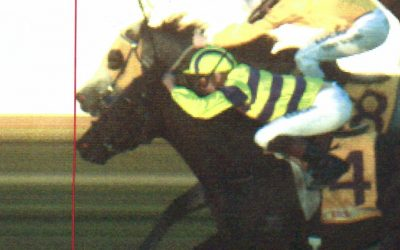 Destination Rocks wins in controversial dead heat at Wagga