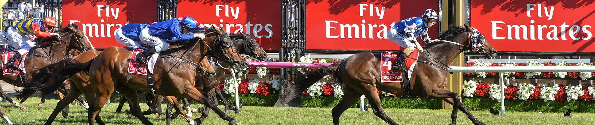 Tried Horses - Australian Bloodstock Thoroughbred Syndication
