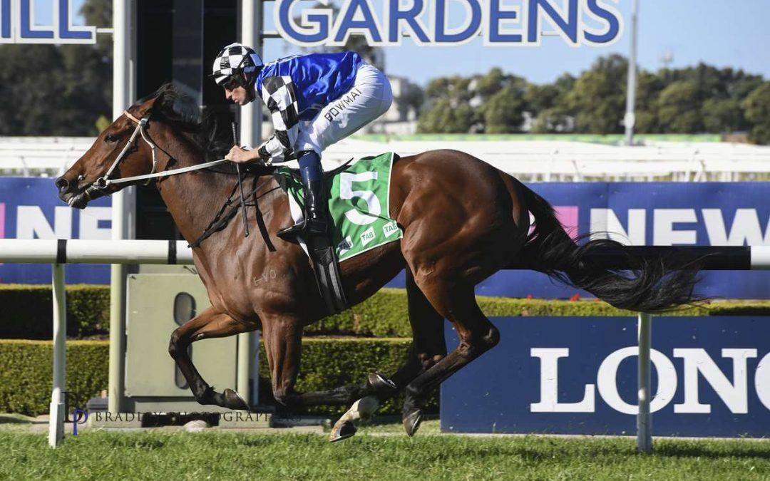 Ex-Perth mare scores first Sydney victory