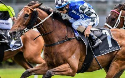Distance no worries for Kris Lees' Queensland Cup runners